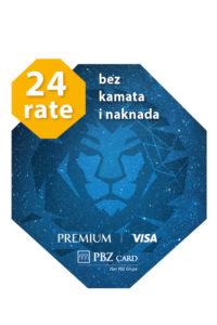 VISA 2019 obrocna otplata tag 24 rate
